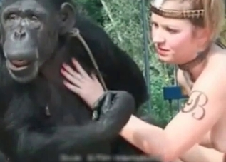 Animal Sex Site - Real zoo sex porn movies with animals